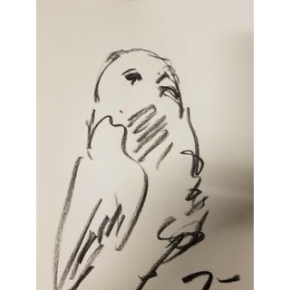 "Original Charcoal Paper Sketch Drawing, Bird Picture by Jose Trujillo - 9x12"" For Sale"