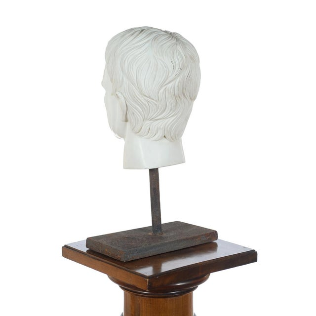 Roman Emperor Marble Bust For Sale In Los Angeles - Image 6 of 10