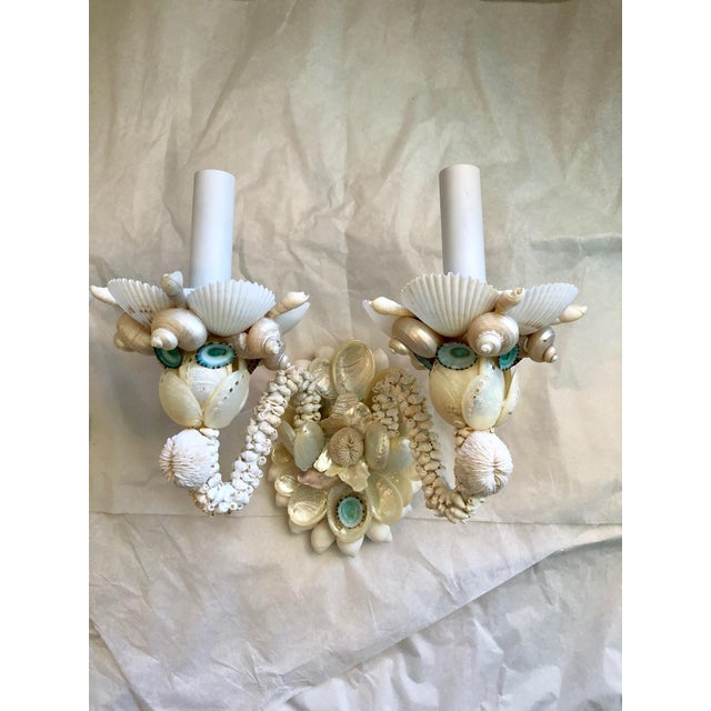 Contemporary Two-Light Seashell Sconces - a Pair For Sale - Image 3 of 6