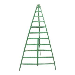 Huge Fruit Picking Ladder