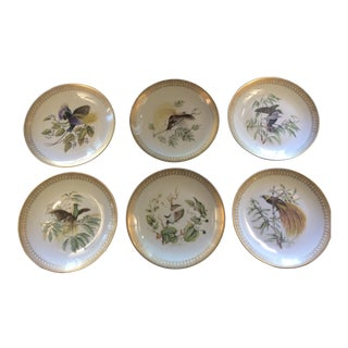 Early 20th Century Mottahedeh Birds of Paradise Salad Plates - Set of 6 For Sale