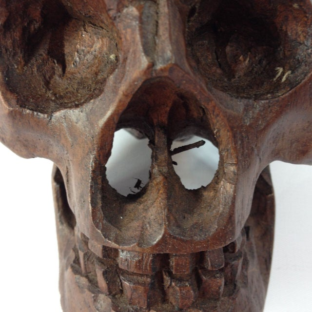 Small Anatomical Wooden Skull For Sale - Image 5 of 6