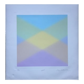 Barry Nelson 1978 Op-Art Etching Abstract For Sale