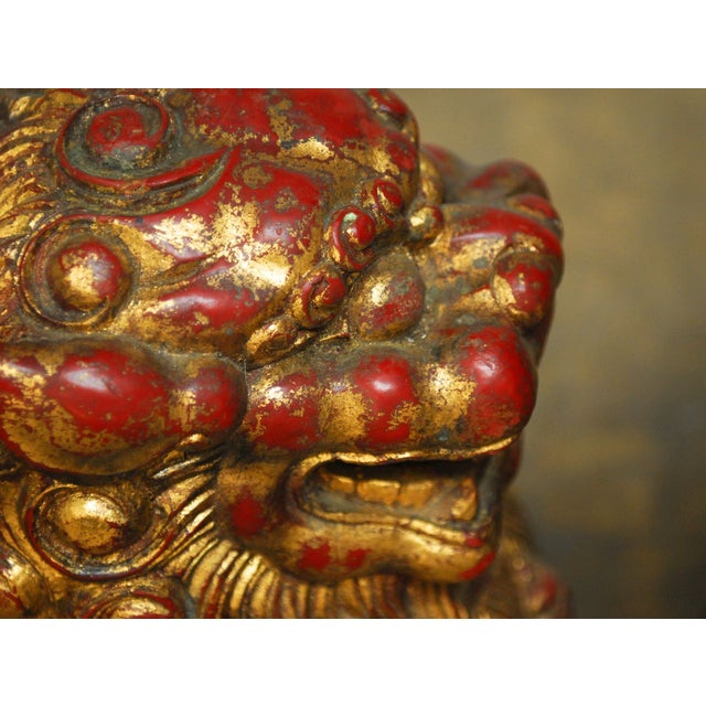 Large Chinese Gilt Temple Foo Dogs - Pair For Sale - Image 5 of 7