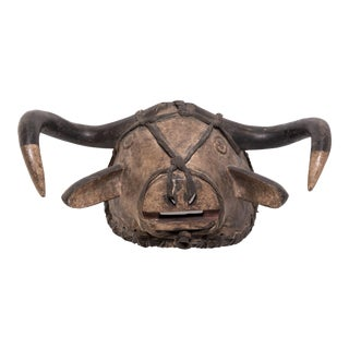 Bidjogo Tribal Initiation Ox Mask For Sale
