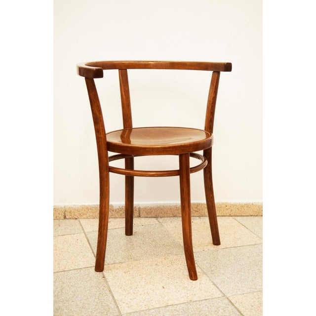 Beech No. 8 armchair by Thonet, 1904 For Sale - Image 7 of 7
