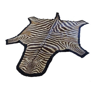 Authentic Zebra Hide Rug on Felt - 5' x 10'