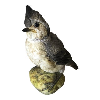 1980s Connoisseur of Malvern Fledgling Titmouse For Sale