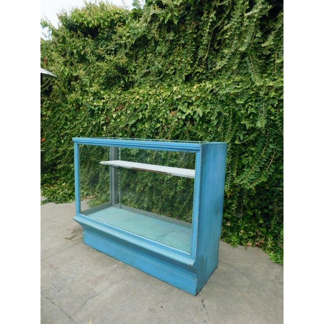 1950s Vintage Botanical Blue Display Case For Sale - Image 5 of 7