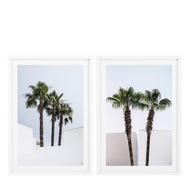 Palm Trees Palms Print (Set of 2) For Sale