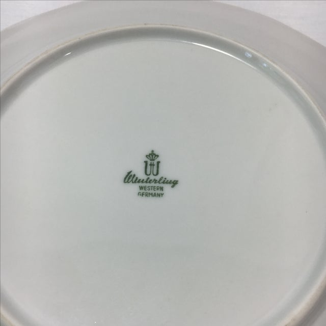 Bavarian Winterling China Fish Pattern Plates - 7 For Sale - Image 7 of 7