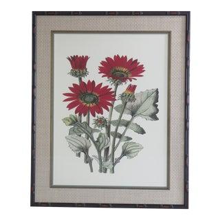 Botanical Floral Framed & Matted Print