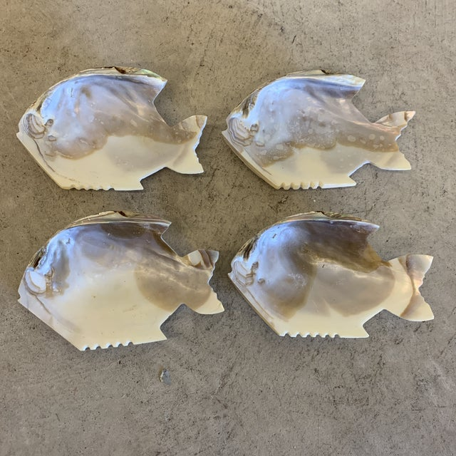 Fish Shaped Shell Appetizer Dishes - a Set of Four For Sale - Image 11 of 11