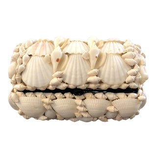 Hinged Seashell Box