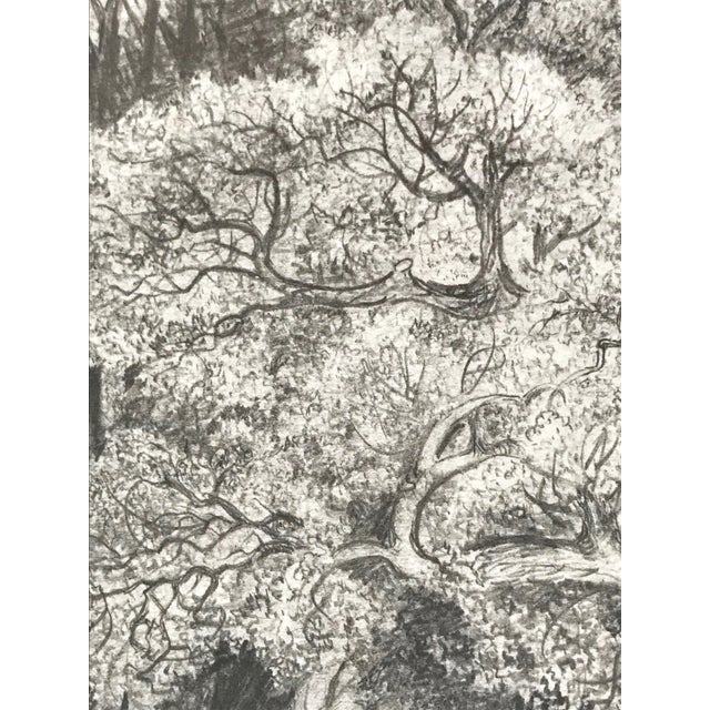 19th Century Antique 19th Century English Graphite Landscape Drawing For Sale - Image 5 of 7