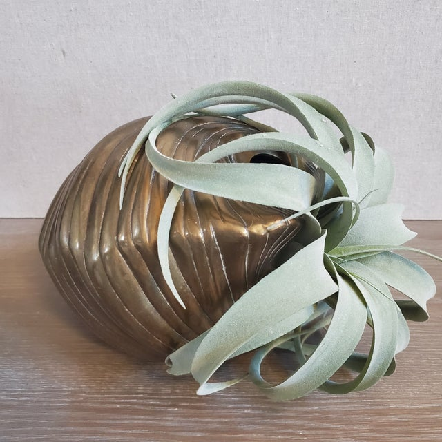1980s Large Brass Clam Sea Shell Sculpture & Planter For Sale - Image 5 of 9