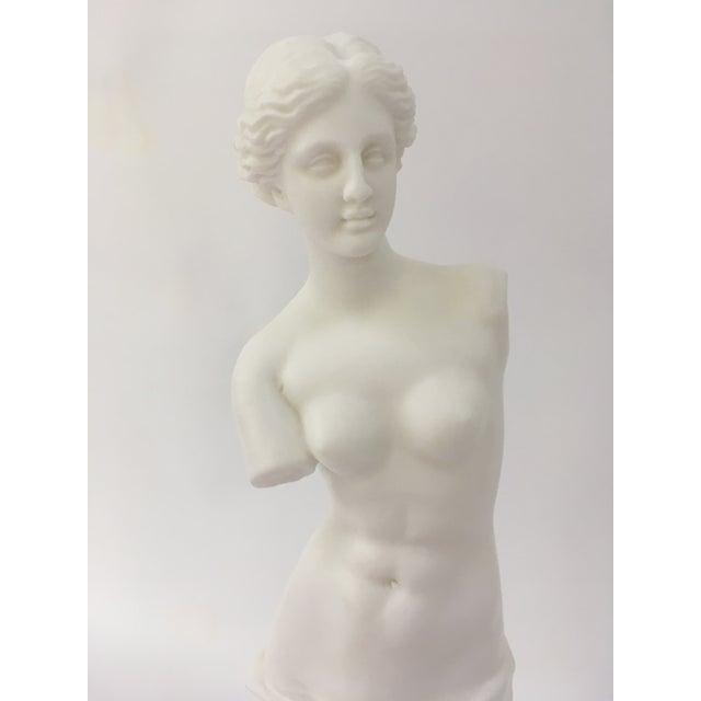 Italian Venus De Milo Statue For Sale - Image 3 of 5