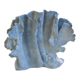 Large Natural Ocean Sea Blue Branch Coral Specimen