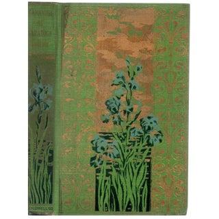 """1887 """"Samantha at Saratoga"""" First Edition Book"""