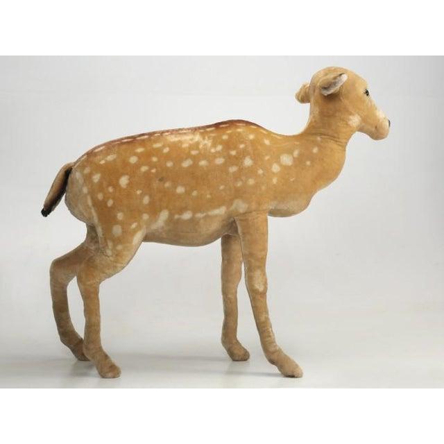 """Mid-Century Modern 1963 Steiff Mohair Fallow Deer """"Studio Animal"""" For Sale - Image 3 of 13"""