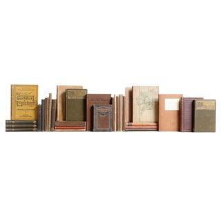 Vintage Tan & Brown Mini Books - Set of 30
