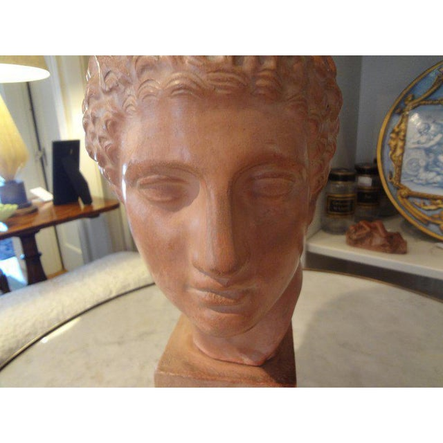 1920s Vintage French Classical Male Terra Cotta Bust Sculpture For Sale - Image 4 of 8