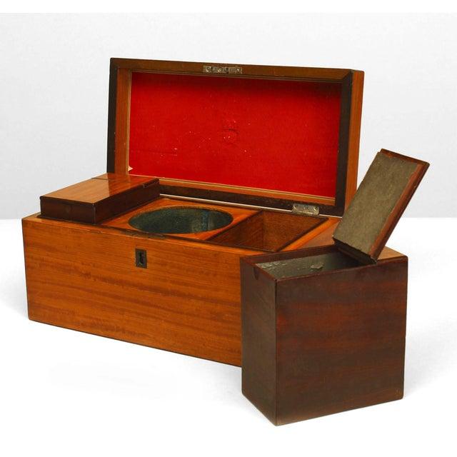 English Georgian rectangular satinwood veneered & banded edge tea caddy box hinged top and silver handle revealing two...