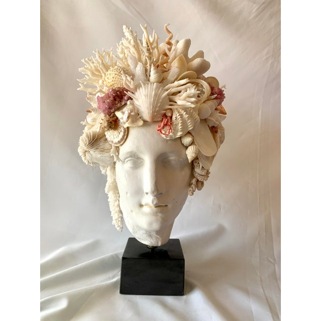 White Hygiea Shell Head Sculpture For Sale - Image 8 of 8