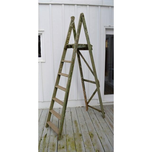 Green 1940s Vintage Garden Ladder For Sale - Image 8 of 8