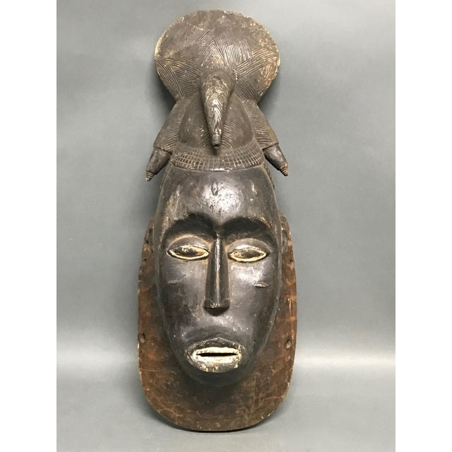 African African Tribal Art Baule Wood Mask For Sale - Image 3 of 8