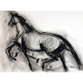 Horse Drawing #6 by Heidi Lanino For Sale
