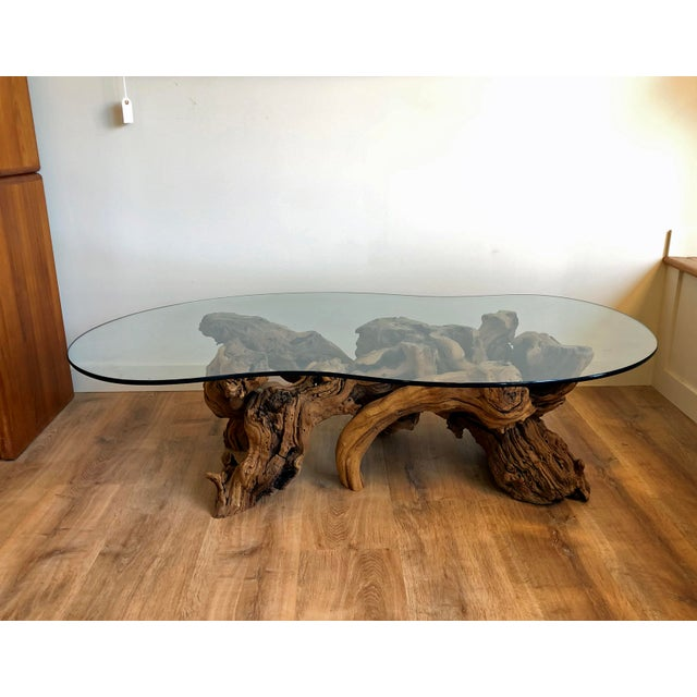 Vintage Burl Wood Root and Tempered Glass Coffee Table. For Sale - Image 10 of 10