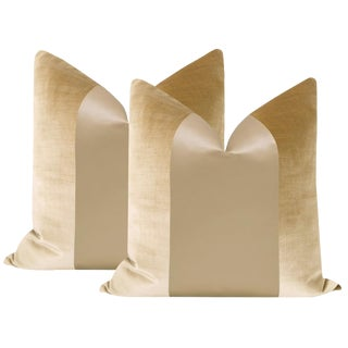 "22"" Champagne Velvet & Silk Panel Pillows - a Pair For Sale"