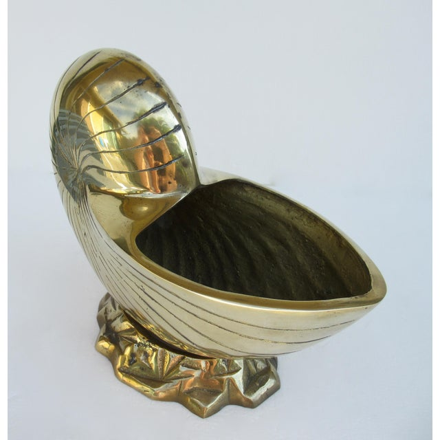 1960s C.1970's Vintage Mid-Century Modern Brass Nautilus Shell Bottle Cooler For Sale - Image 5 of 13