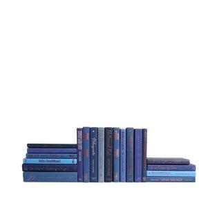 Pink on Denim Modern : Set of Twenty Decorative Books