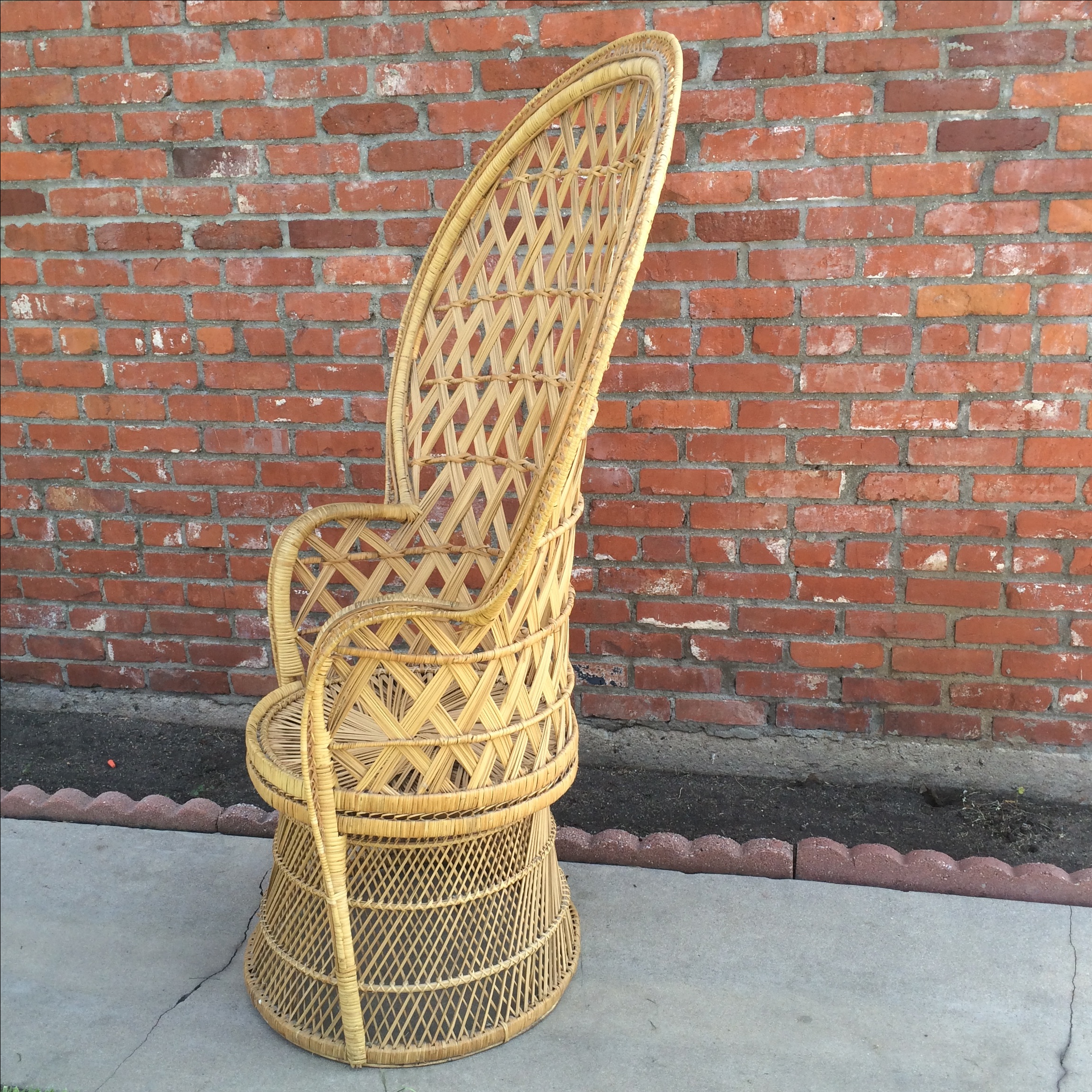 High Quality Rattan Peacock Fan Chair   Image 3 Of 8