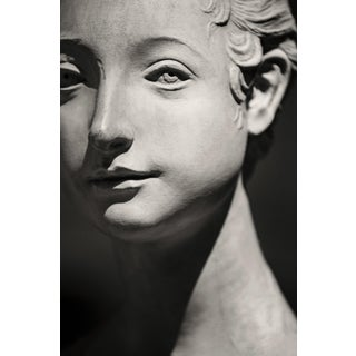 """""""Fiesole II"""" Contemporary Still Life Black and White Photograph by Guy Sargent For Sale"""