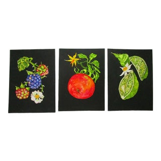Lynne French Gallery Wall Garden Fruit Paintings - Set of 3 For Sale