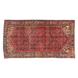 "Persian Hand Knotted Rug - 5'2""x10' For Sale"