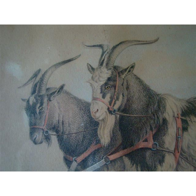 Boys in Goat Cart Victorian Handtinted Portrait For Sale - Image 4 of 6