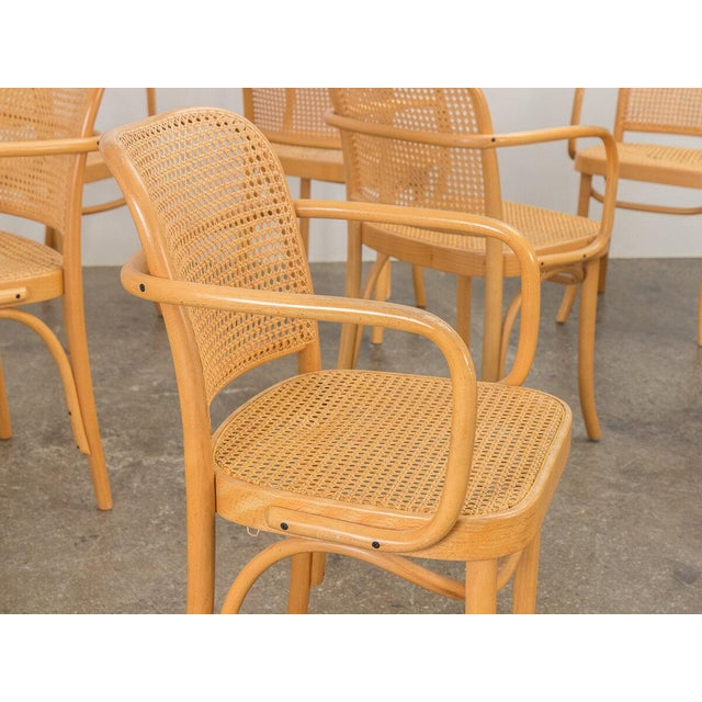 Joseph Hoffman Bentwood Chairs - Set of 8 For Sale - Image 9 of 11