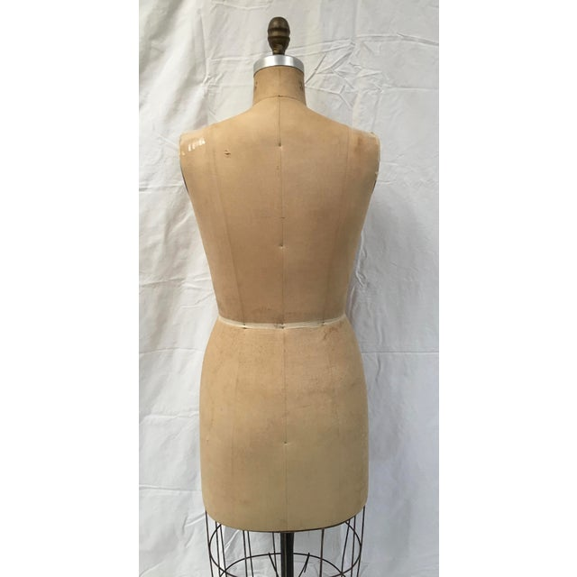Vintage Wolf Dressmaker's Mannequin For Sale - Image 10 of 11