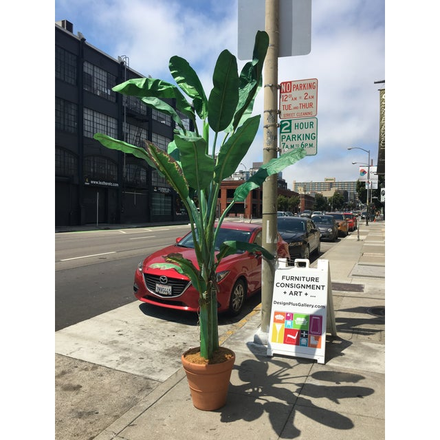 Design Plus Gallery has a fabulous faux silk Banana leaf plant. This large beauty is lifelike and easy to maintain, no...