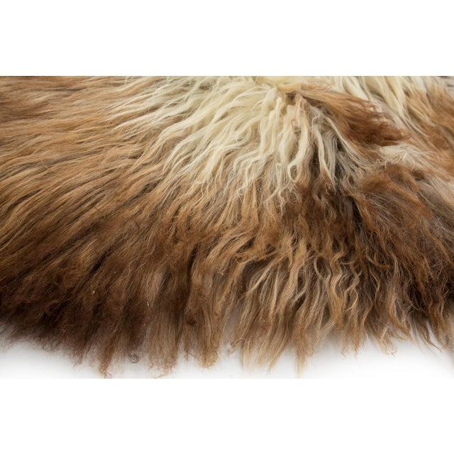 """Contemporary Natural Wool Sheepskin Pelt Rug - 2'2""""x3'4"""" For Sale - Image 4 of 7"""