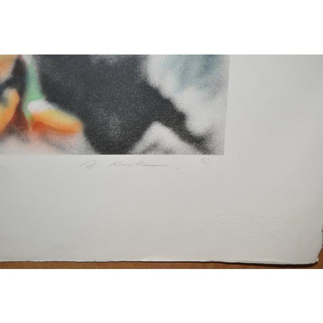 "Paper David T. Kessler ""Reflected Overhang"" Lithograph For Sale - Image 7 of 9"