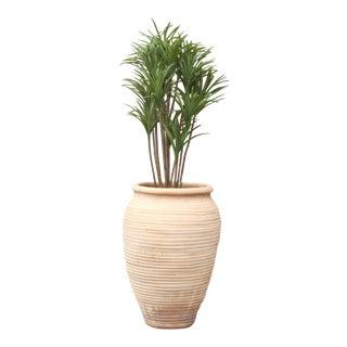 Large Egyptian Terra Cotta Planter For Sale