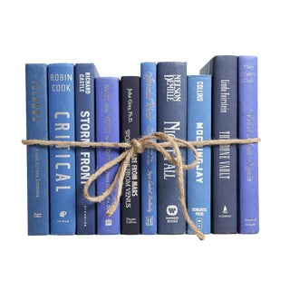 Modern Summit ColorPak - Decorative Books in Shades of Blue with Silver Embellishments