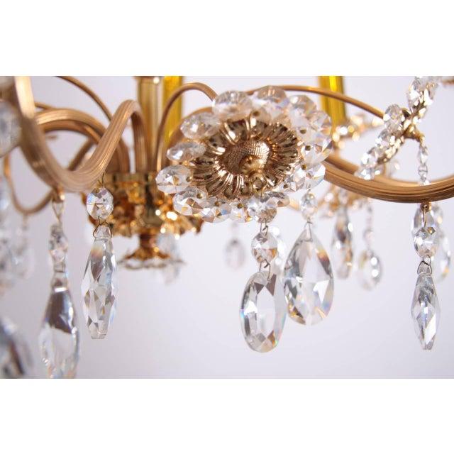 Hollywood Regency Huge Palwa Gilded Brass and Glass Flower Chandelier For Sale - Image 3 of 5