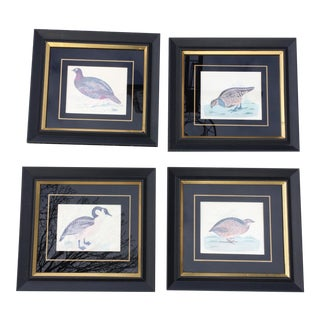 Vintage Framed Gold & Black Bird Hangings - Set of 4