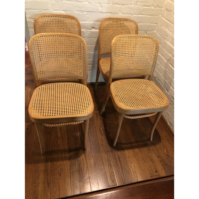 Josef Hoffmann Thonet Prague Side Chairs- a Set of Four For Sale - Image 11 of 11